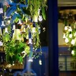 Decoração com plantas iluminadas cria lustre vivo para bares