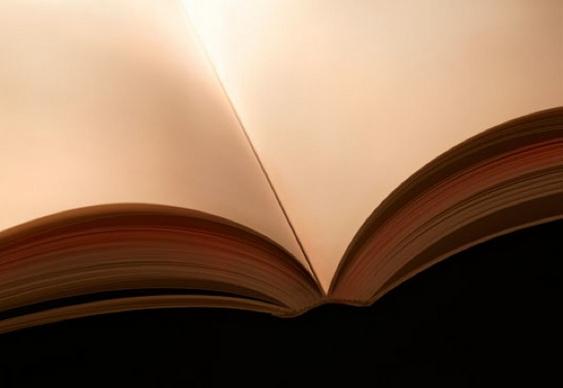 Seios de Mulher - Livro