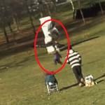 Pai filma ataque de águia tentando levar seu filho pequeno