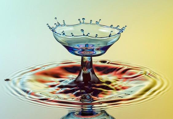 Fruteira de água