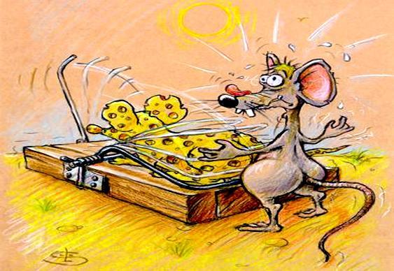 Ratoeira - Camundongo