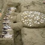 Richard Clayderman toca piano para Tartarugas de Galápagos