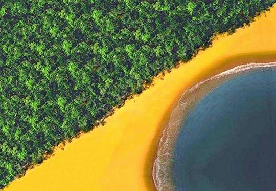 Floresta Praia e Mar