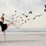 Revoada da sorte no curta-metragem Um Balé dos Pássaros