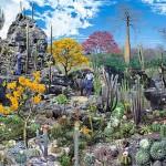 Caatinga sequestra mais carbono que as florestas tropicais
