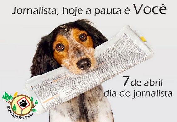 Cachorro entregador de jornal