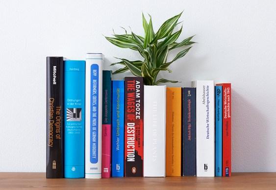 Vaso de planta em livro