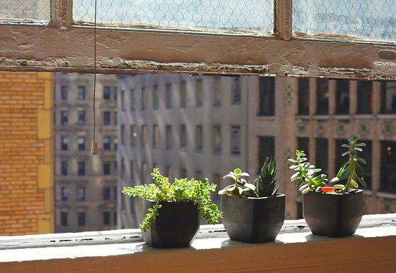Vaso para plantas reciclado