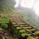 Governo confirma investimentos para reativar ferrovias
