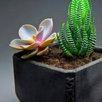 Vasos e potes ecológicos feitos com o pó de café usado