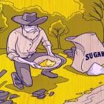 Mineração 'verde' de ouro com açúcar derivado do amido de milho