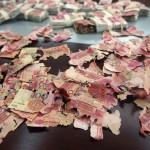 Insetos devoram fortuna guardada no colchão de chinesa