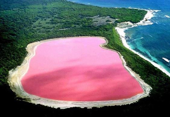 Lago de água rosa