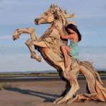 Esculturas de animais com troncos de madeira gasta pelo mar