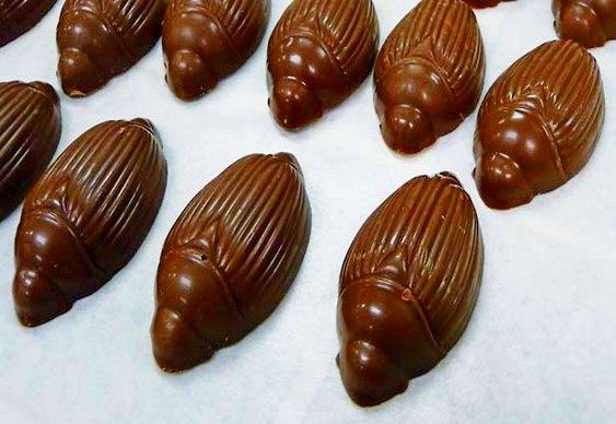 Chocolate contaminado