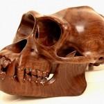 Incríveis crânios de macacos em madeira e cristais Swarovski