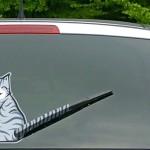 Rabo de Gato: novo limpador de parabrisas traseiro de automóvel
