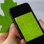 Lente de aumento transforma câmera de celular em microscópio