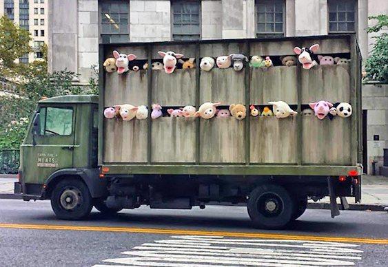 Caminhão de carnes
