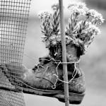Sapato Velho, na voz de Paulinho Tapajós, que morreu hoje aos 68 anos