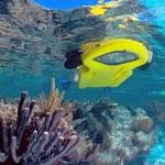 Veja também o fundo do mar pelo visor de uma prancha flutuante