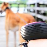 Coleira para cães com guia retrátil Lishinu para usar no pulso