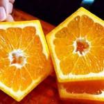 Laranjas e tangerinas com cinco lados para dar sorte nas provas