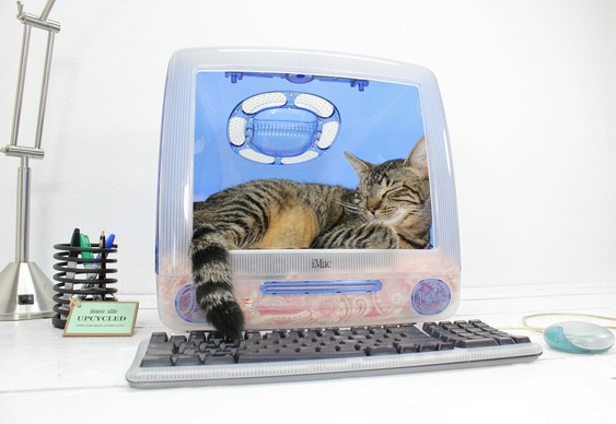 iMac da Apple reciclado como iCat