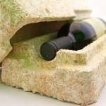 Champignon substitui plástico como matéria-prima de embalagens