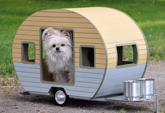 Reboque para camping com cães