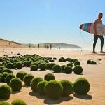 Objetos flutuantes não identificados aparecem em praia da Austrália