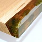 Musgos encapsulados em resina compõem móveis de madeira