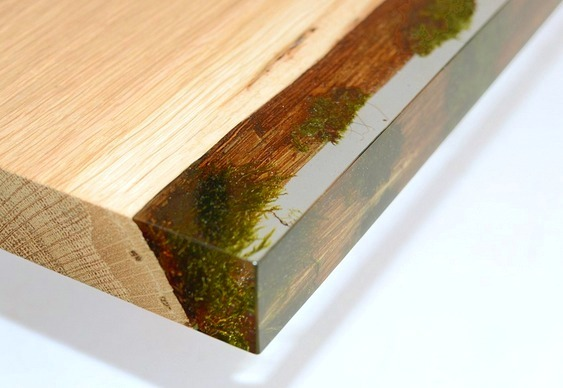 Prateleira de estante com musgo encapsulado em resina
