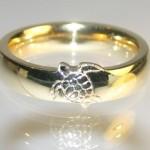 Namorada dá anel com tartaruga de presente para mergulhador