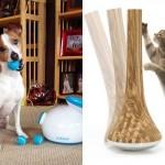 Brinquedos pet para cães e gatos que são o bicho solto!