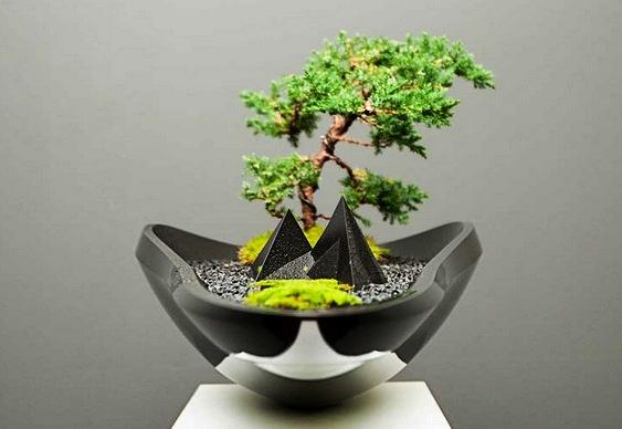 Projeto de vaso contemporâneo