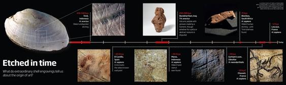 Desenho do Homo erectus