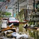 Test drive com jipe em floresta no meio da grande cidade