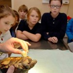 Alunos de escola criam prótese para tartaruga voltar a andar
