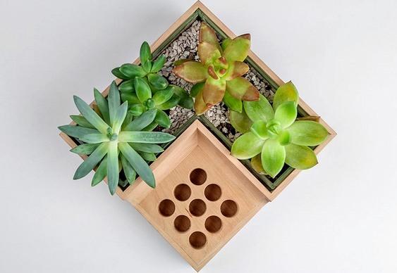 Vaso de plantas e flores para escrivaninha