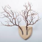 Arranjo floral de parede substitui troféu de caça bizarro