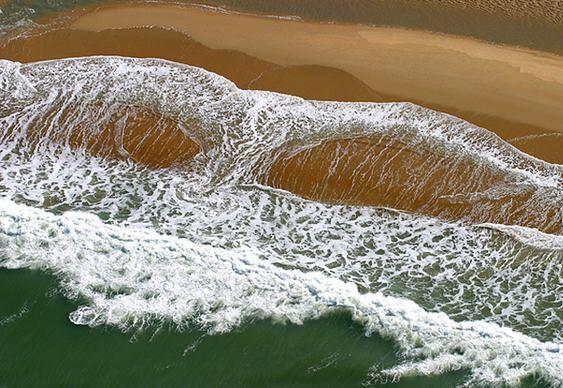 Pareidolia - rabo de baleia na areia