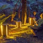 Reciclagem de troncos de madeira rachados como luminárias