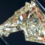 Os incríveis diamantes lapidados como cabeças de cavalos