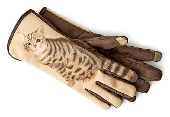 Rabo de gato no dedo