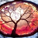 Árvores da Vida de ágata e arame em contraste contra o Sol