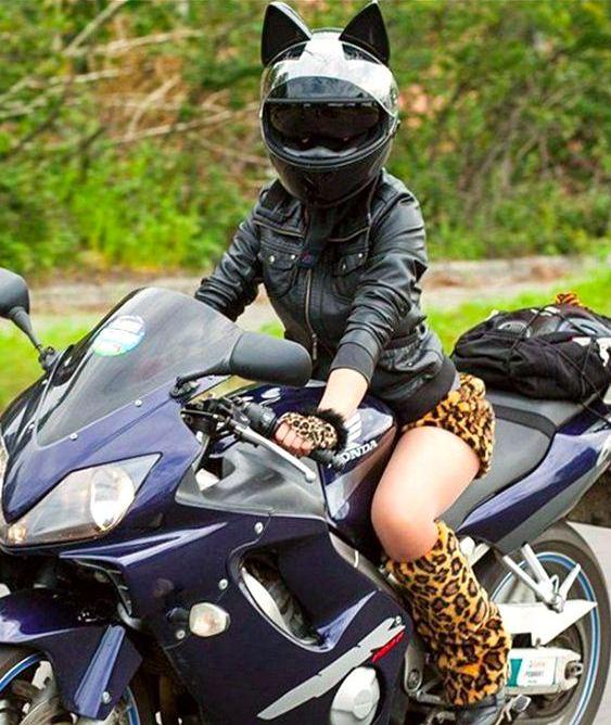 Pantera de motocicleta