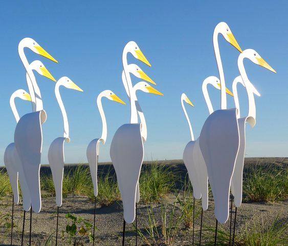 Pássaros que se mexem com o vento