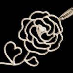 Rosa, a rainha das flores, símbolo do amor e da luta política