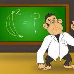 Macacos prestes a começar a falar deixam cientistas preocupados